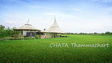 ดื่มความสุขท่ามกลางธรรมชาติ   CHATA Thammachart    Issue 163