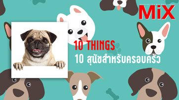 10 Things : The Best Dogs for Kids and Families 10 สุนัขสำหรับครอบครัว   Isuue 164