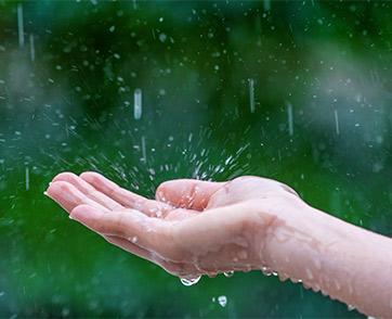 สายฝนทำให้ฉันมีความสุข เพราะฉันคือ Pluviophile