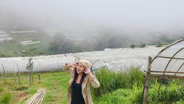นอแล ขอบด้ง ในม่านหมอก ณ สถานีเกษตรหลวงอ่างขาง