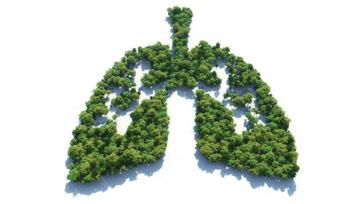 เคราะห์ซ้ำกรรมซัดการระบาดของไวรัสโคโรนาและฝุ่นพิษกทม. PM 2.5 Issue 158