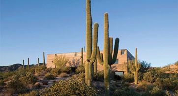 Desert Courtyard
